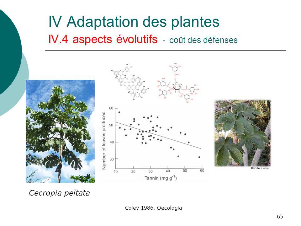 65 IV Adaptation des plantes IV.4 aspects évolutifs - coût des défenses Cecropia peltata Coley 1986, Oecologia