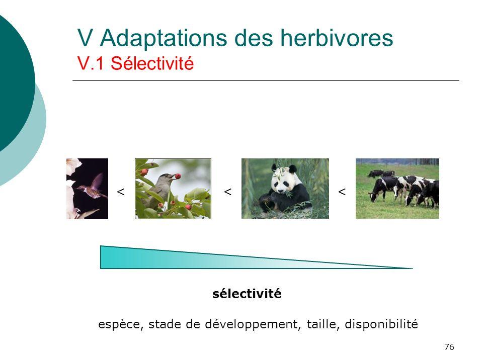 76 V Adaptations des herbivores V.1 Sélectivité sélectivité < < < espèce, stade de développement, taille, disponibilité
