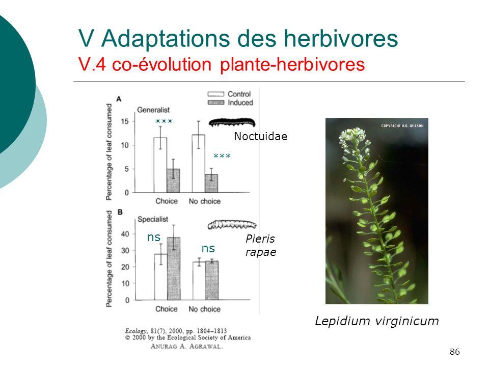 86 V Adaptations des herbivores V.4 co-évolution plante-herbivores ns *** Lepidium virginicum Pieris rapae Noctuidae