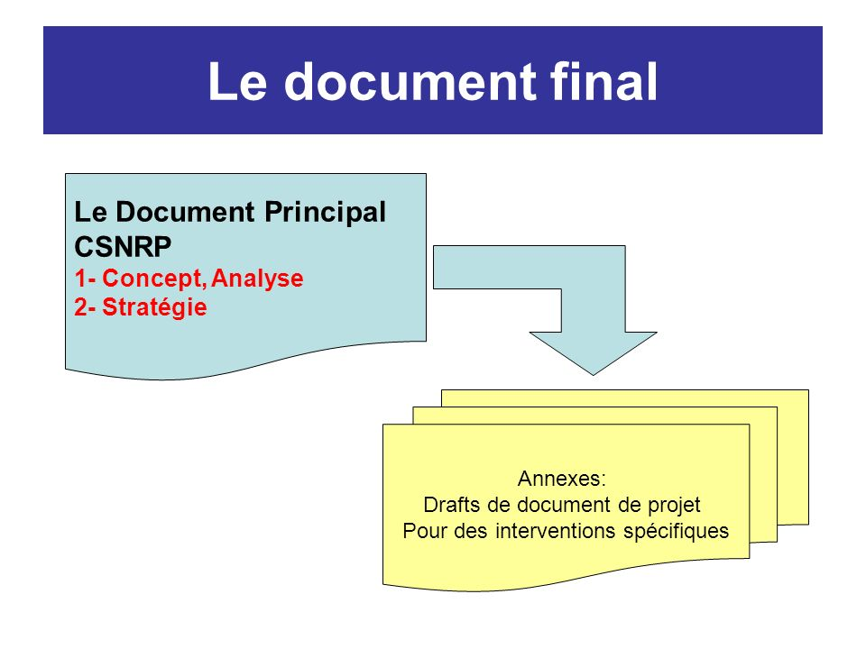 Le document final Le Document Principal CSNRP 1- Concept, Analyse 2- Stratégie Annexes: Drafts de document de projet Pour des interventions spécifiques