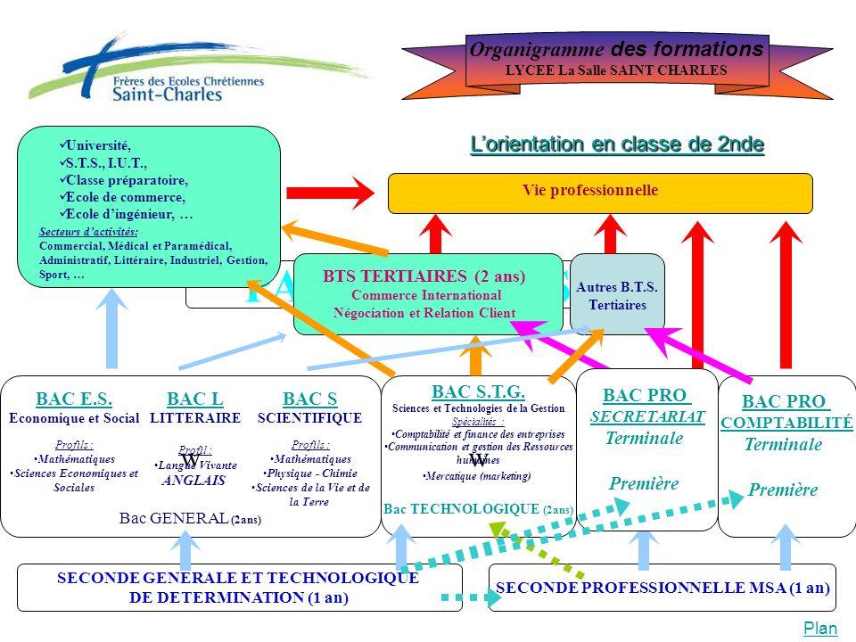 PASSERELLES BTS TERTIAIRES (2 ans) Commerce International Négociation et Relation Client BAC PRO COMPTABILITÉ Terminale Première Université, S.T.S., I