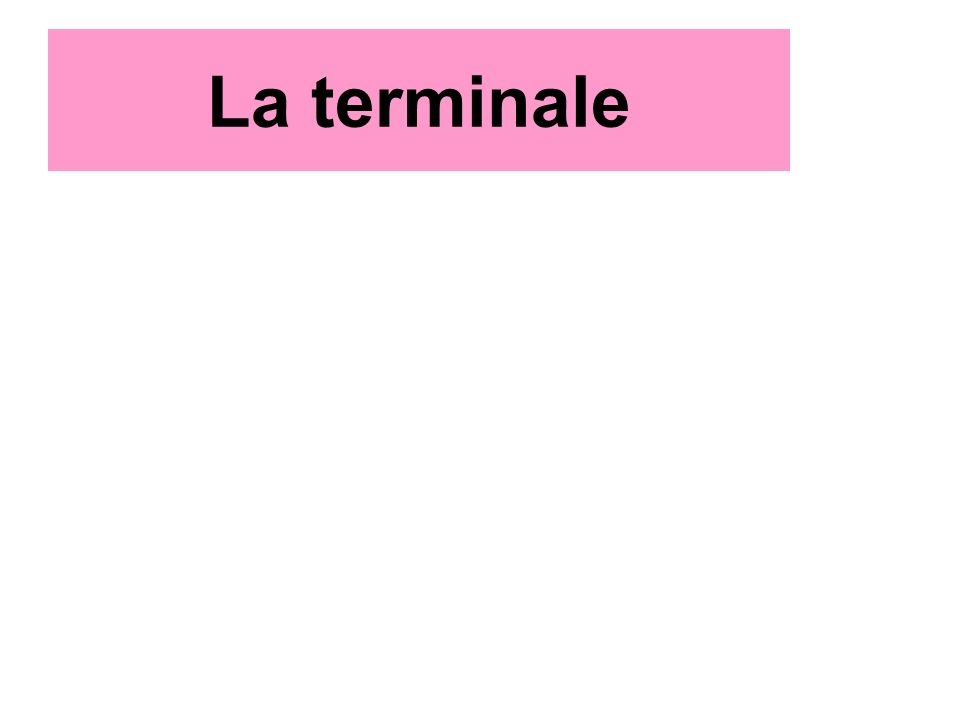 La terminale