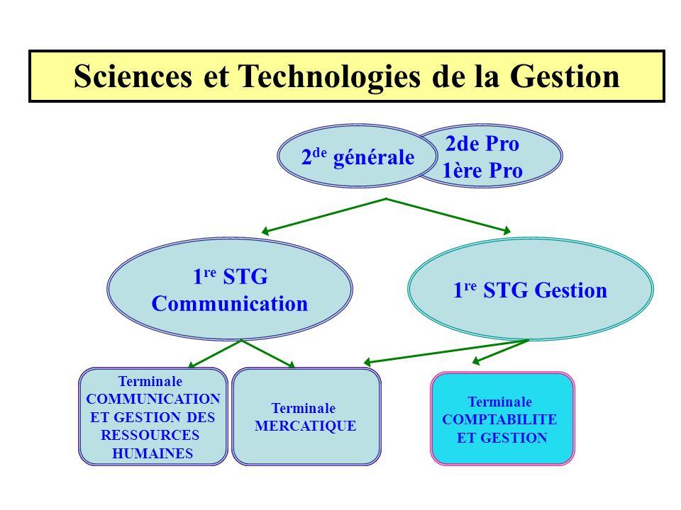 1 re STG Communication 1 re STG Gestion 2de Pro 1ère Pro 2 de générale Terminale ACTION ET COMMUNICATION ADMINISTRATIVES Terminale ACTION ET COMMUNICA