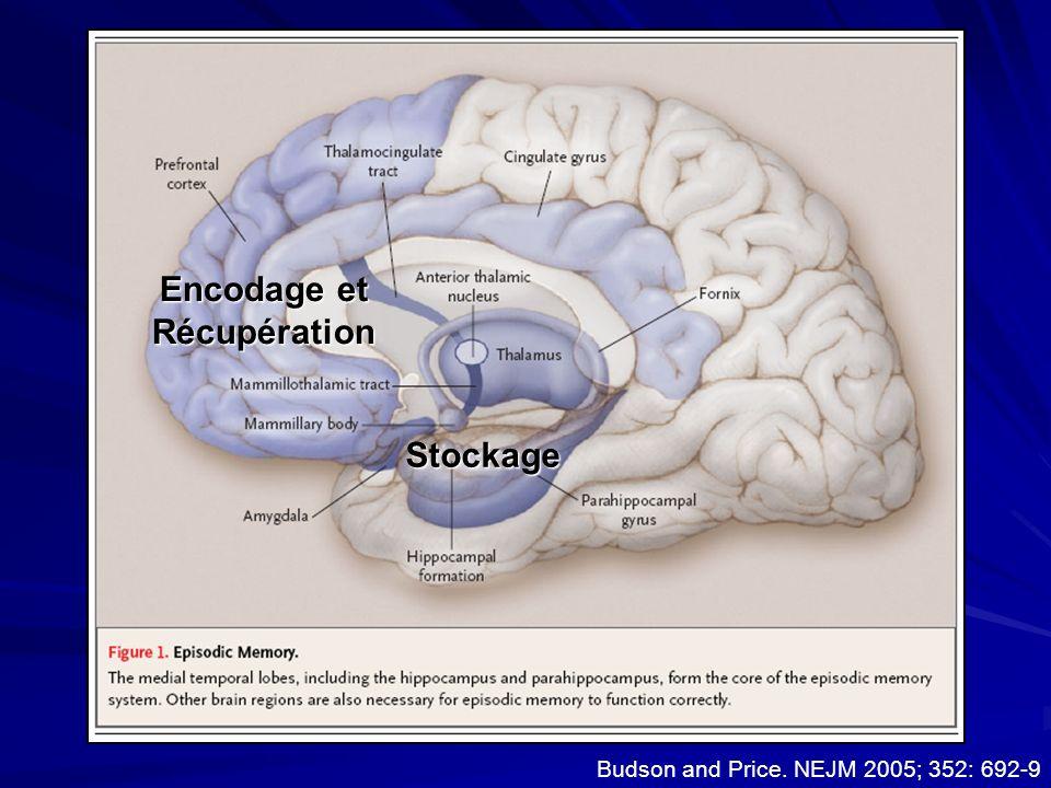 Budson and Price. NEJM 2005; 352: 692-9 Episodic memory anatomy Encodage et Récupération Stockage