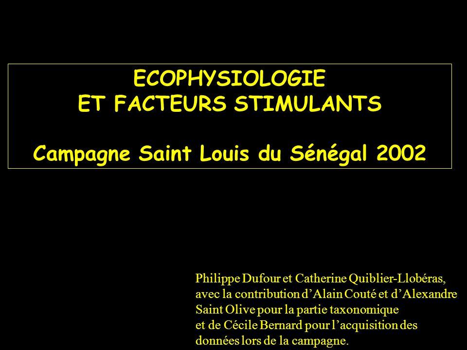 ECOPHYSIOLOGIE ET FACTEURS STIMULANTS Campagne Saint Louis du Sénégal 2002 Philippe Dufour et Catherine Quiblier-Llobéras, avec la contribution dAlain
