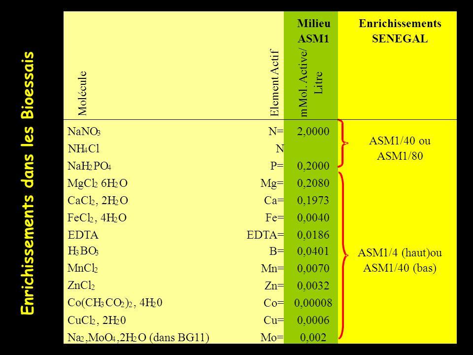 Milieu ASM1 Enrichissements SENEGAL Molécule Element Actif mMol. Active/ Litre NaNO 3 N=2,0000 NH 4 Cl N NaH 2 PO 4 P=0,2000 MgCl 2 6H 2 O Mg=0,2080 C