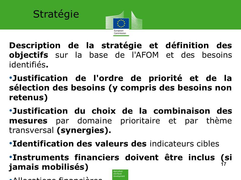 Stratégie Description de la stratégie et définition des objectifs sur la base de l AFOM et des besoins identifiés.