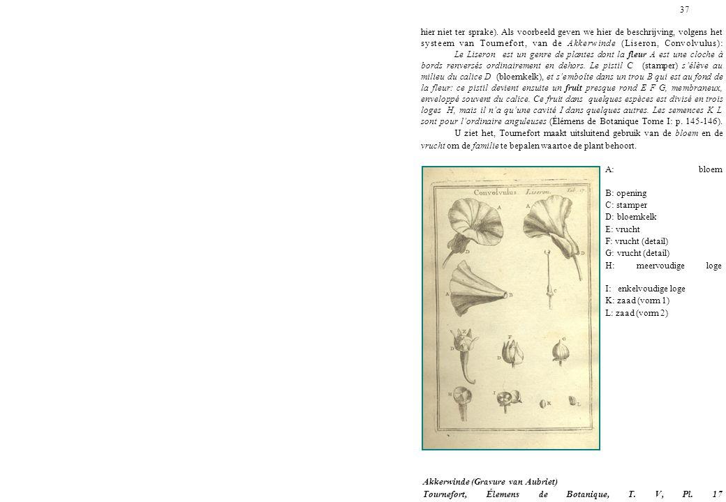 37 hier niet ter sprake). Als voorbeeld geven we hier de beschrijving, volgens het systeem van Tournefort, van de Akkerwinde (Liseron, Convolvulus): L