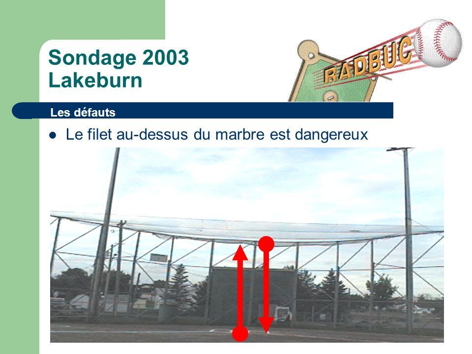 Sondage 2003 Lakeburn Le filet au-dessus du marbre est dangereux Les défauts