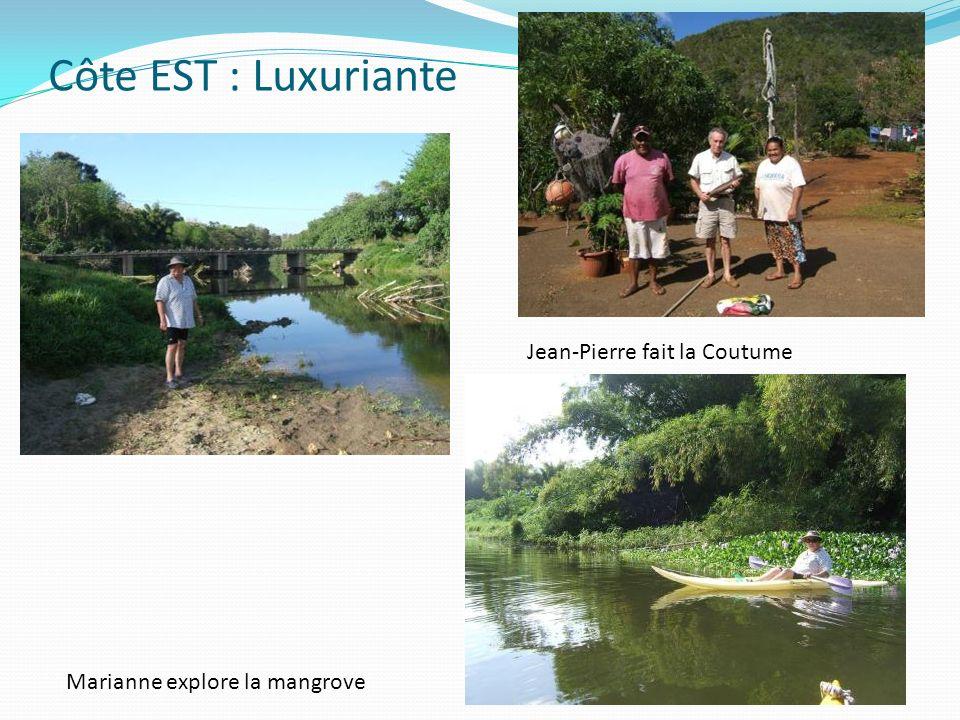 Côte EST : Luxuriante Jean-Pierre fait la Coutume Marianne explore la mangrove