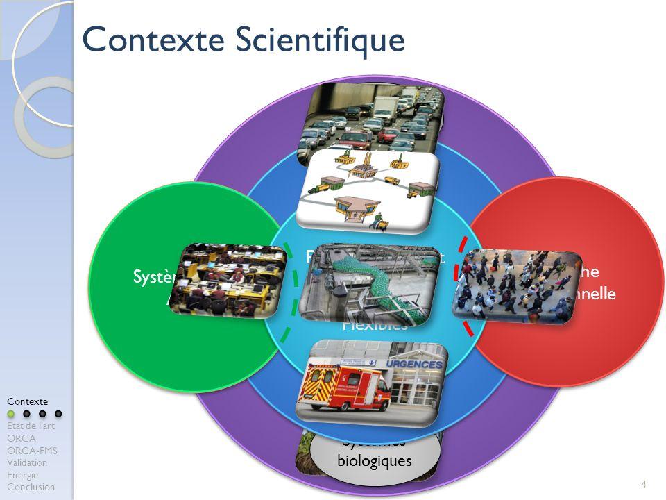 Systèmes manufacturiers Systèmes de transport Systèmes biologiques 4 Contexte Scientifique Pilotage des Systèmes Complexes Systèmes sociaux Système Bo