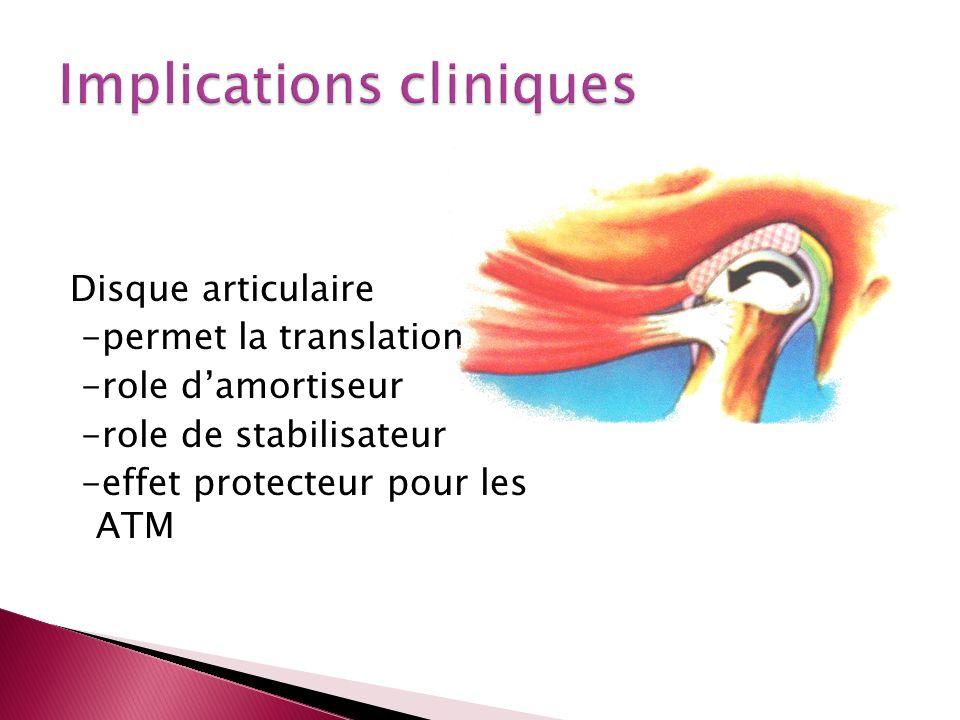 Disque articulaire -permet la translation -role damortiseur -role de stabilisateur -effet protecteur pour les ATM