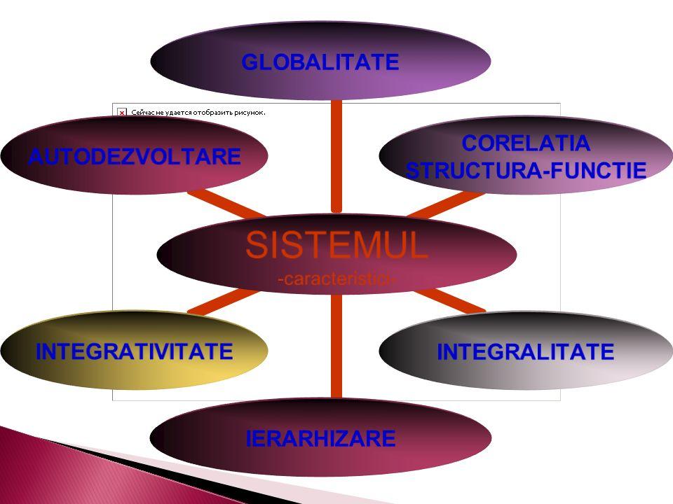 SISTEMUL - caracteristici- GLOBALITATE CORELATIA STRUCTURA- FUNCTIE INTEGRALITATEIERARHIZAREINTEGRATIVITATEAUTODEZVOLTARE