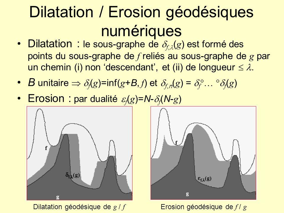 Dilatation / Erosion géodésiques numériques Dilatation : le sous-graphe de f, ( g ) est formé des points du sous-graphe de f reliés au sous-graphe de g par un chemin (i) non descendant, et (ii) de longueur.