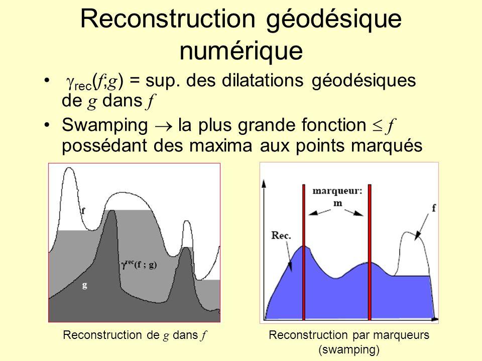 Reconstruction géodésique numérique rec ( f ; g ) = sup. des dilatations géodésiques de g dans f Swamping la plus grande fonction f possédant des maxi