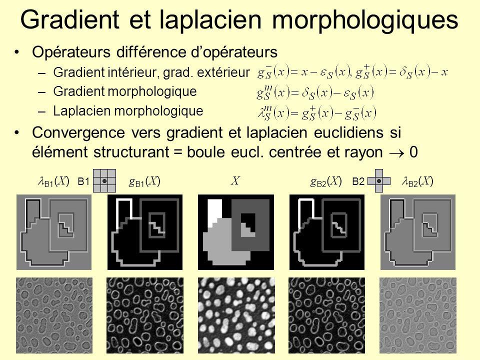 Gradient et laplacien morphologiques Opérateurs différence dopérateurs –Gradient intérieur, grad. extérieur –Gradient morphologique –Laplacien morphol
