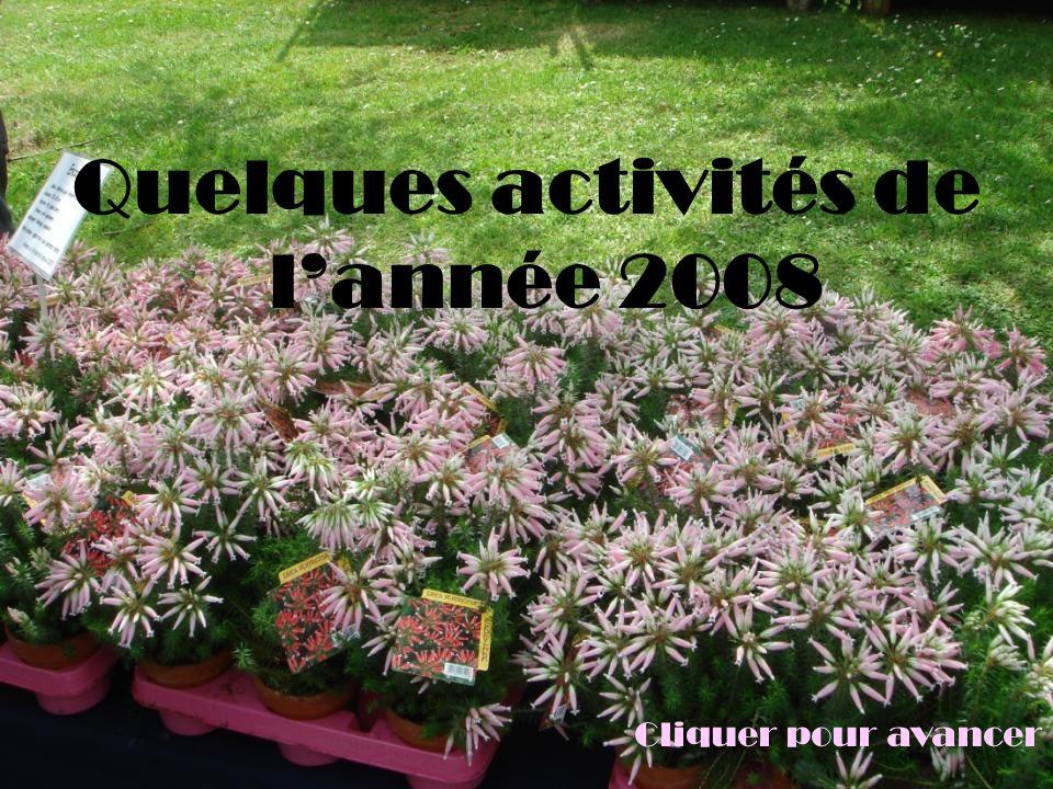 Quelques activités de lannée 2008 Cliquer pour avancer