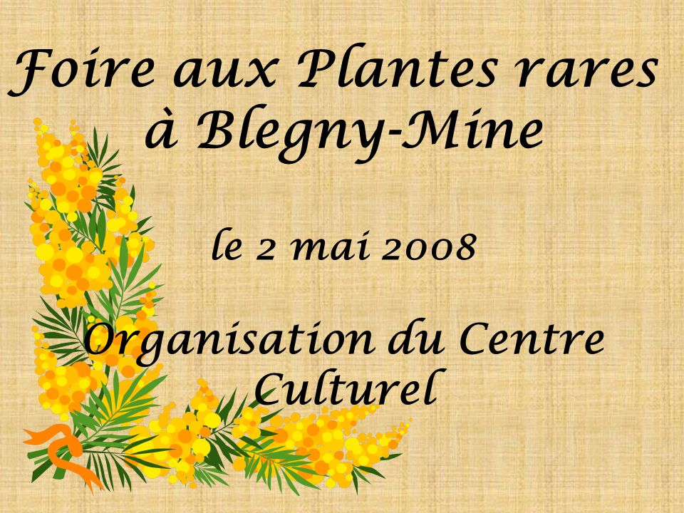 Foire aux Plantes rares à Blegny-Mine le 2 mai 2008 Organisation du Centre Culturel