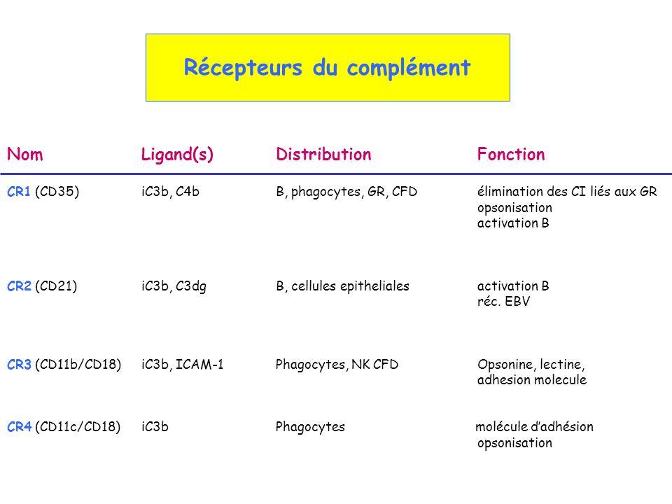 Récepteurs du complément NomLigand(s) DistributionFonction CR1 (CD35) iC3b, C4b B, phagocytes, GR, CFD élimination des CI liés aux GR opsonisation act