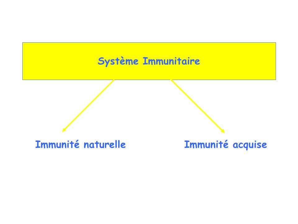 Composants cellulaires : Cellules phagocytaires (neutro, mono, macrophages) Cellules relarguant des médiateurs (baso, eosino, mast cells) Cellules NK Composants moléculaires : Complément Protéines de la phase aïgue Cytokines (IFN etc) Immunité Naturelle