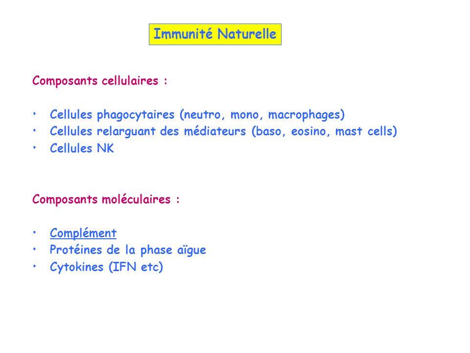 Composants cellulaires : Cellules phagocytaires (neutro, mono, macrophages) Cellules relarguant des médiateurs (baso, eosino, mast cells) Cellules NK