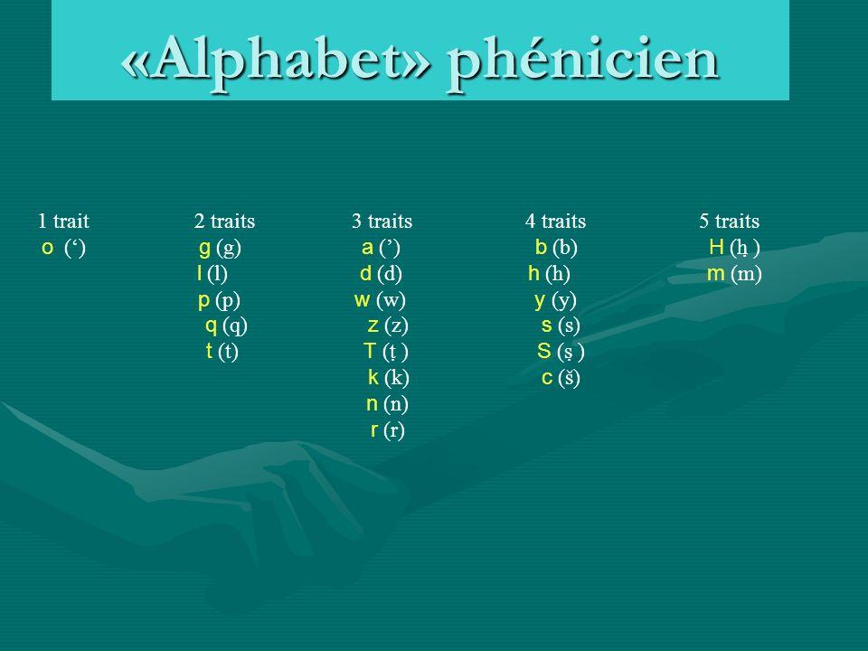 «Alphabet» phénicien 1 trait 2 traits 3 traits 4 traits 5 traits o () g (g) a () b (b) H (h ̣) l (l) d (d) h (h) m (m) p (p) w (w) y (y) q (q) z (z) s (s) t (t) T (t ̣) S (s ̣) k (k) c (š) n (n) r (r)