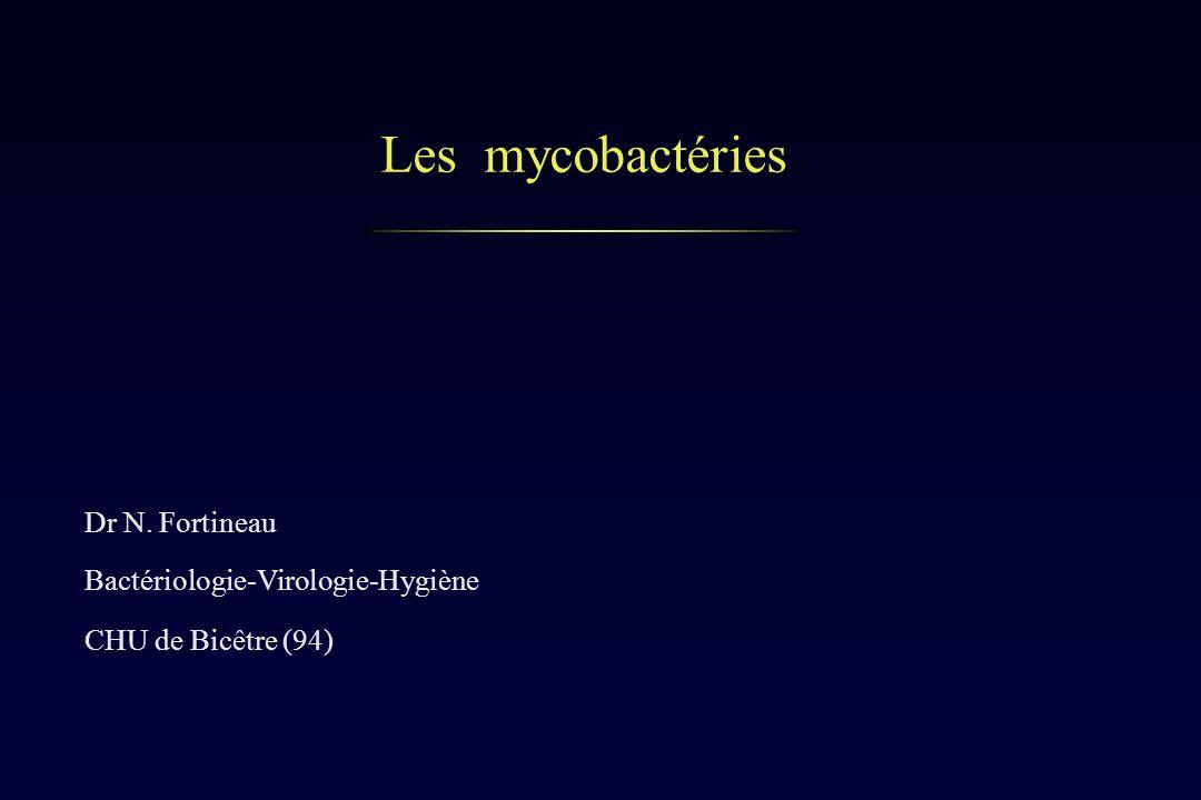 Les mycobactéries Dr N. Fortineau Bactériologie-Virologie-Hygiène CHU de Bicêtre (94)