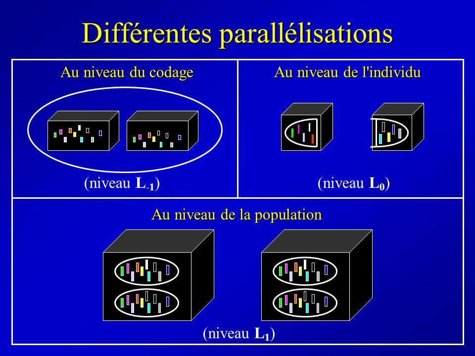 Différentes parallélisations Au niveau du codage Au niveau de l'individu Au niveau de la population (niveau L -1 )(niveau L 0 ) (niveau L 1 )