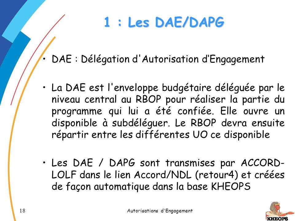 18 Autorisations d'Engagement 1 : Les DAE/DAPG DAE : Délégation d'Autorisation dEngagement La DAE est l'enveloppe budgétaire déléguée par le niveau ce