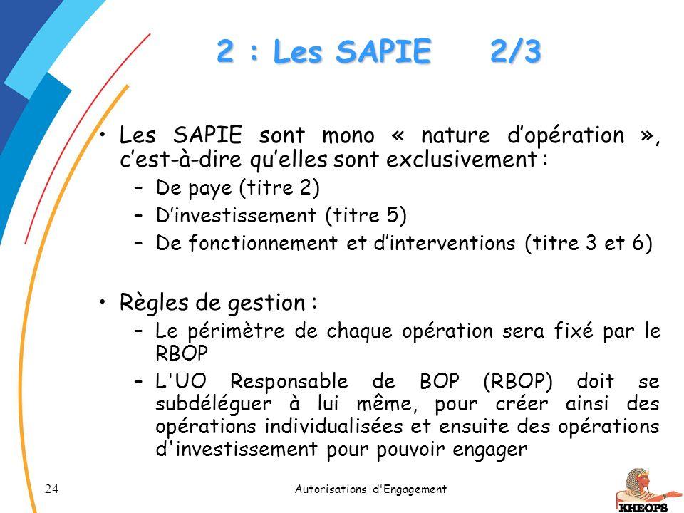 24 Autorisations d'Engagement 2 : Les SAPIE2/3 Les SAPIE sont mono « nature dopération », cest-à-dire quelles sont exclusivement : –De paye (titre 2)