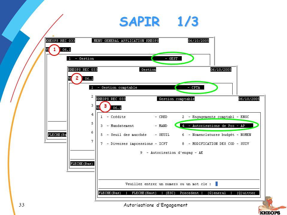 33 Autorisations d'Engagement SAPIR1/3 1 2 3