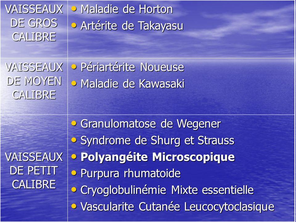 VAISSEAUX DE GROS CALIBRE Maladie de Horton Maladie de Horton Artérite de Takayasu Artérite de Takayasu VAISSEAUX DE MOYEN CALIBRE Périartérite Noueus