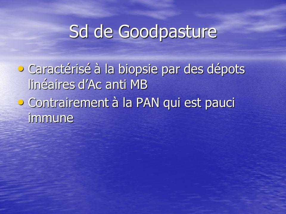 Sd de Goodpasture Caractérisé à la biopsie par des dépots linéaires dAc anti MB Caractérisé à la biopsie par des dépots linéaires dAc anti MB Contrair