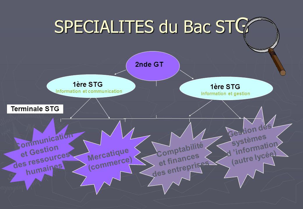 SPECIALITES du Bac ST G Terminale STG 1ère STG Information et gestion 2nde GT Communication et Gestion des ressources humaines Comptabilité et finance