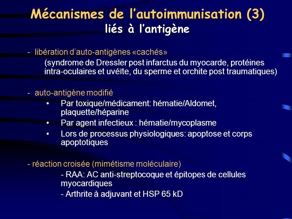 Mécanismes de lautoimmunisation (3) liés à lantigène - libération dauto-antigènes «cachés» (syndrome de Dressler post infarctus du myocarde, protéines