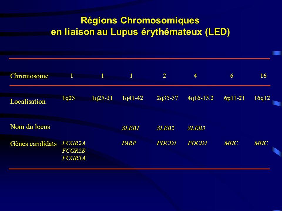 Chromosome Localisation Nom du locus Gènes candidats 1 1q23 FCGR2A FCGR2B FCGR3A 1 1q25-31 1 1q41-42 SLEB1 PARP 2 2q35-37 SLEB2 PDCD1 4 4q16-15.2 SLEB