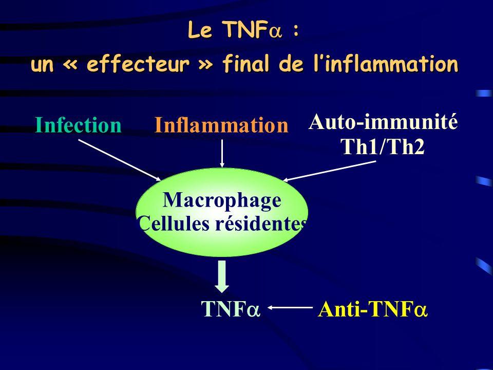 Le TNF : un « effecteur » final de linflammation InfectionInflammation Auto-immunité Th1/Th2 Macrophage Cellules résidentes TNF Anti-TNF