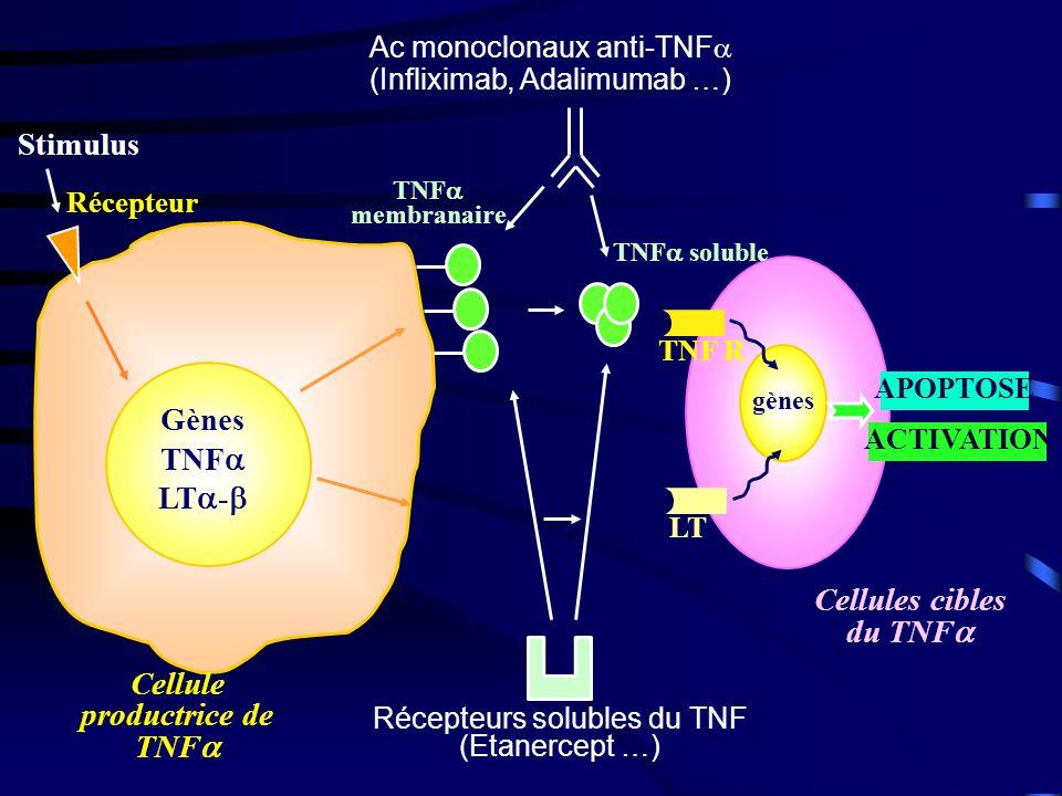 Stimulus Récepteur gènes LT TNF R APOPTOSE ACTIVATION TNF membranaire TNF soluble Cellule productrice de TNF Cellules cibles du TNF Gènes TNF LT - Ac