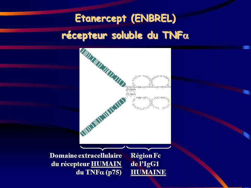 Domaine extracellulaire du récepteur HUMAIN du TNF (p75) Région Fc de lIgG1 HUMAINE Etanercept (ENBREL) récepteur soluble du TNF Etanercept (ENBREL) r
