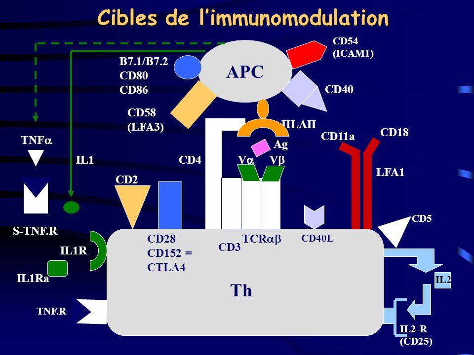 Cibles de limmunomodulation APC B7.1/B7.2 CD80 CD86 CD58 (LFA3) IL1 TNF S-TNF.R CD2 CD28 CD152 = CTLA4 CD4 CD40 HLAII CD18 CD11a LFA1 Ag V V CD3 TCR I