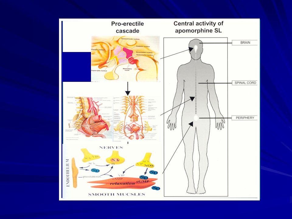 Les neuromédiateurs Au niveau des corps caverneux Proérectiles: Proérectiles: ACH, VIP, NO Antiérectiles: Antiérectiles: NorADR, NPY Au niveau médullaire Proérectile: Proérectile: Ocytocyne Au niveau encéphalique Proérectile: Proérectile: Dopamine