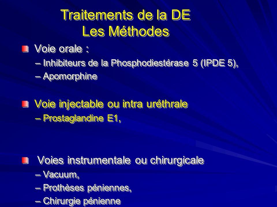 Calcium FML Terminaisons Nerveuses Cellules Endothéliales