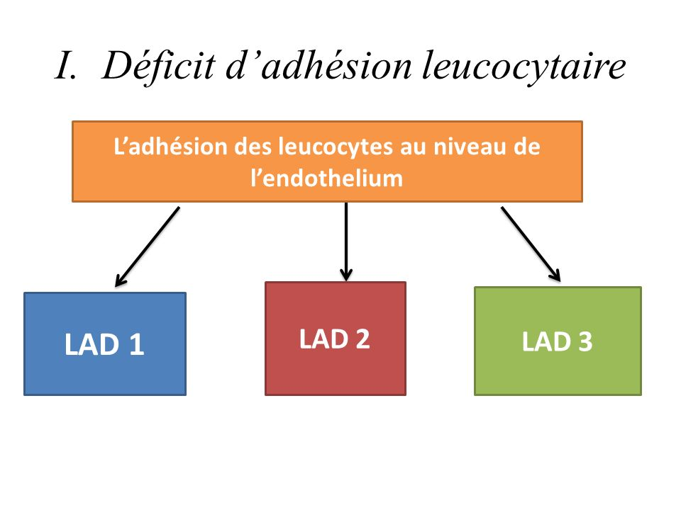 DEFINITIONS LAD I: Touche les intégrines exprimés à la surface des leucocytes et les IG endothélium LAD II: Absence du résidus SLEX qui se trouve fixé au peptidoglycane des leucocytes ( empêche le roulement) LAD III: Touche lactivation des intégrines