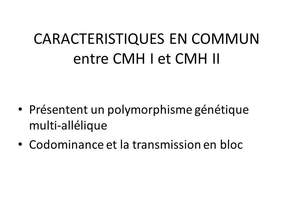 CARACTERISTIQUES EN COMMUN entre CMH I et CMH II Présentent un polymorphisme génétique multi-allélique Codominance et la transmission en bloc