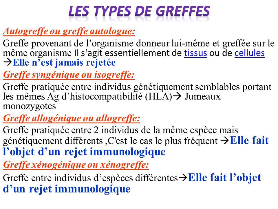 Autogreffe ou greffe autologue: Greffe provenant de lorganisme donneur lui-même et greffée sur le même organisme Il s'agit essentiellement de tissus o