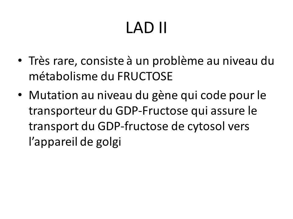 LAD II Très rare, consiste à un problème au niveau du métabolisme du FRUCTOSE Mutation au niveau du gène qui code pour le transporteur du GDP-Fructose qui assure le transport du GDP-fructose de cytosol vers lappareil de golgi