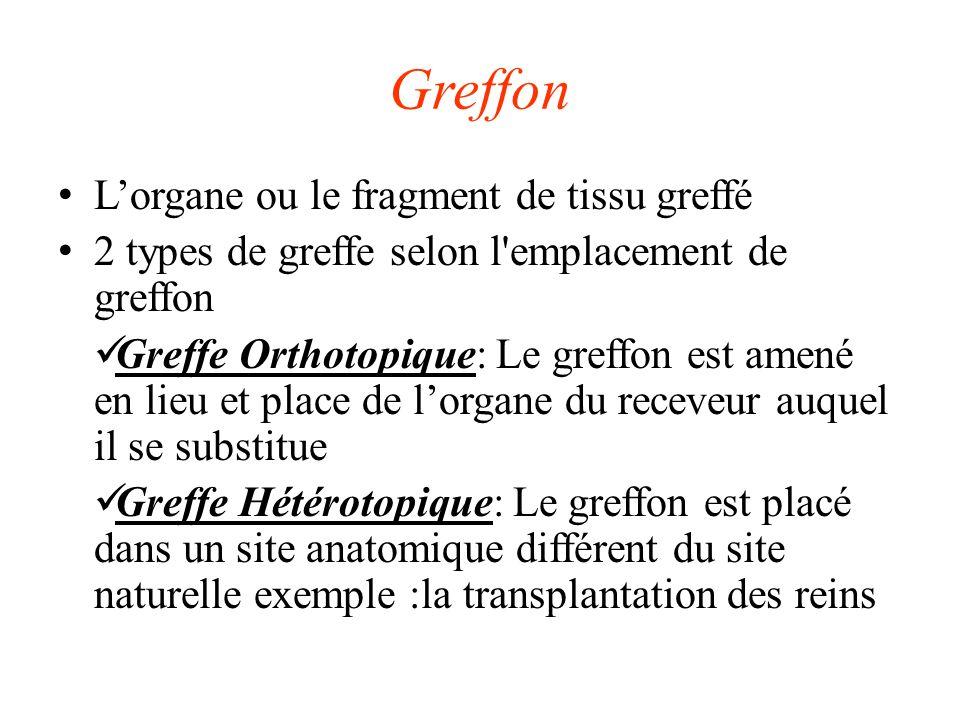 Greffon Lorgane ou le fragment de tissu greffé 2 types de greffe selon l emplacement de greffon Greffe Orthotopique: Le greffon est amené en lieu et place de lorgane du receveur auquel il se substitue Greffe Hétérotopique: Le greffon est placé dans un site anatomique différent du site naturelle exemple :la transplantation des reins