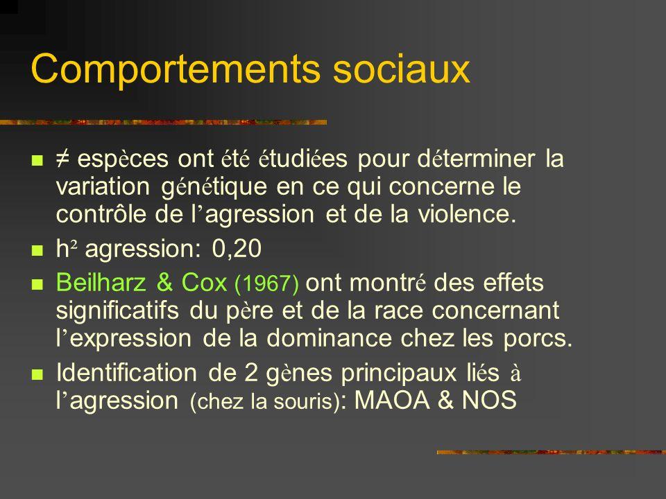 Comportements sociaux esp è ces ont é t é é tudi é es pour d é terminer la variation g é n é tique en ce qui concerne le contrôle de l agression et de la violence.