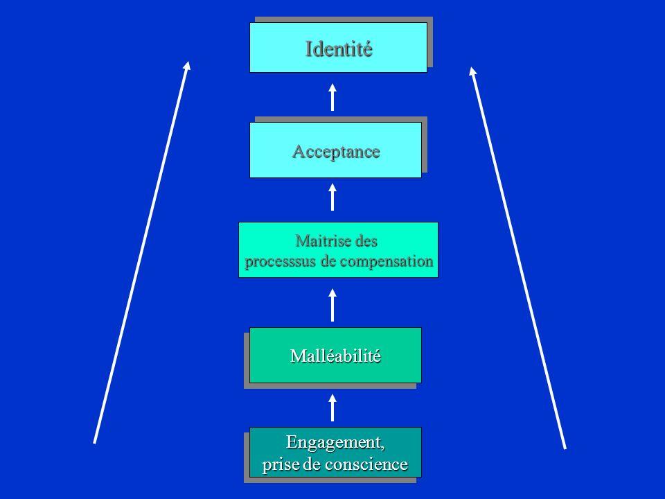 Maitrise des processsus de compensation AcceptanceAcceptance IdentitéIdentité MalléabilitéMalléabilité Engagement, prise de conscience Engagement,