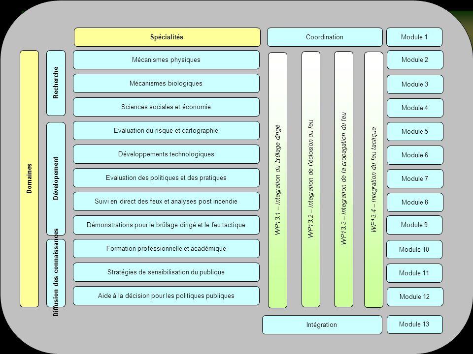 Structure : la matrice FIRE PARADOX Mécanismes physiquesModule 2Mécanismes biologiques Module 3 Sciences sociales et économie Module 4 Evaluation du risque et cartographie Module 5 Développements technologiques Module 6 Evaluation des politiques et des pratiques Module 7 Suivi en direct des feux et analyses post incendie Module 8 Démonstrations pour le brûlage dirigé et le feu tactiqueModule 9Formation professionnelle et académique Module 10 Stratégies de sensibilisation du publique Module 11 Aide à la décision pour les politiques publiques Module 12 Recherche Dévelopement Diffusion des connaissancesDomaines Spécialités WP13.1 – integration du brûlage dirigé WP13.2 – integration de léclosion du feu WP13.3 – integration de la propagation du feu WP13.4 – integration du feu tactique Module 1CoordinationModule 13 Intégration